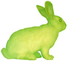 le bunny
